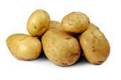 Potetens historie