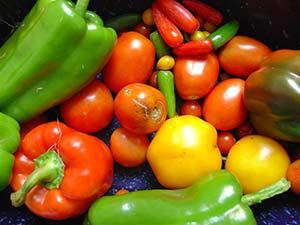 Slik oppbevarer du frukt og grønnsaker