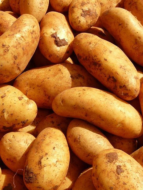 Potetens spennende historie